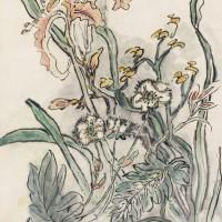 黄宾虹《黄山异卉》