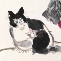 李琼久 猫