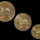 民国时期天津造币厂铸造马钱单面样币三枚