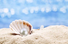 珍珠的鉴别方法 国际大牌都在用假珍珠!