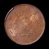 宣统三年大清铜币十文一枚