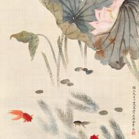 金章 荷塘金鱼