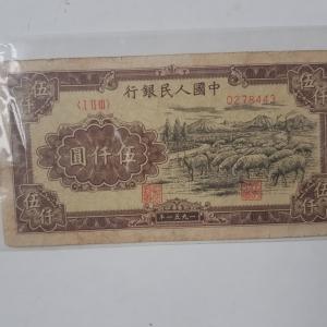 第一套人民币1951年伍仟圆绵羊纸币鉴定真假