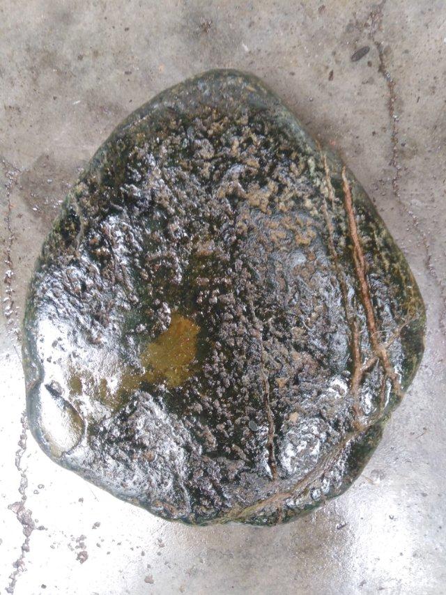 陨石鉴定结果
