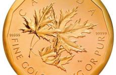 世界最大金币遭窃 重达百公斤价值近3000万