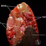 顶级锦红,价值千金,只出现在包浆料南红的肉层中!