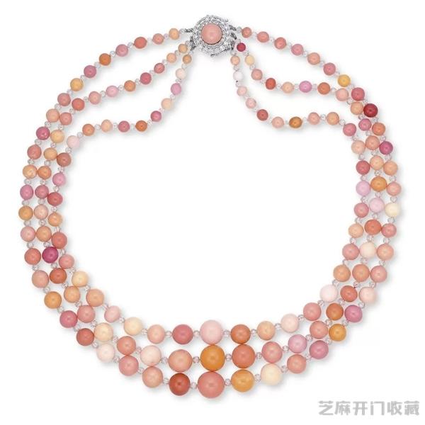 世界上最贵的海螺珍珠
