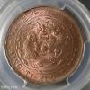 已酉大清铜币二十文都有哪些版别?